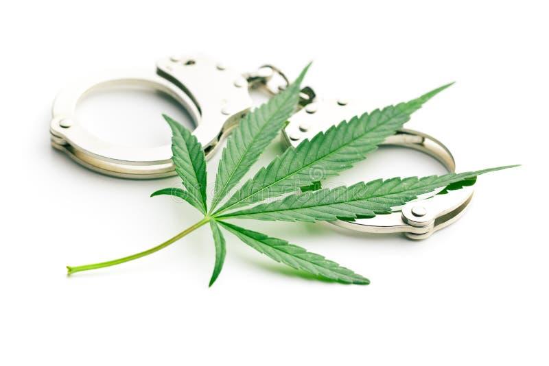 Cannabisblad och handbojor royaltyfria bilder