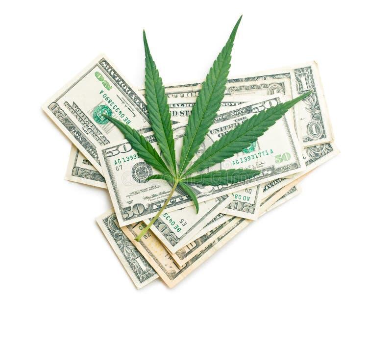 Cannabisblad och pengar arkivbild