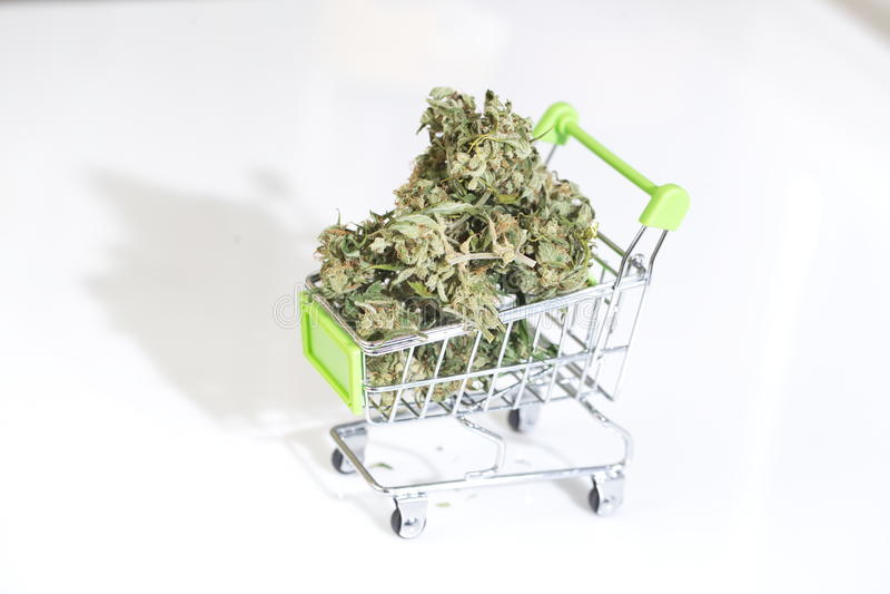 Cannabismarijuana et cannabis de marijuana de texture Drogue juridique photo libre de droits
