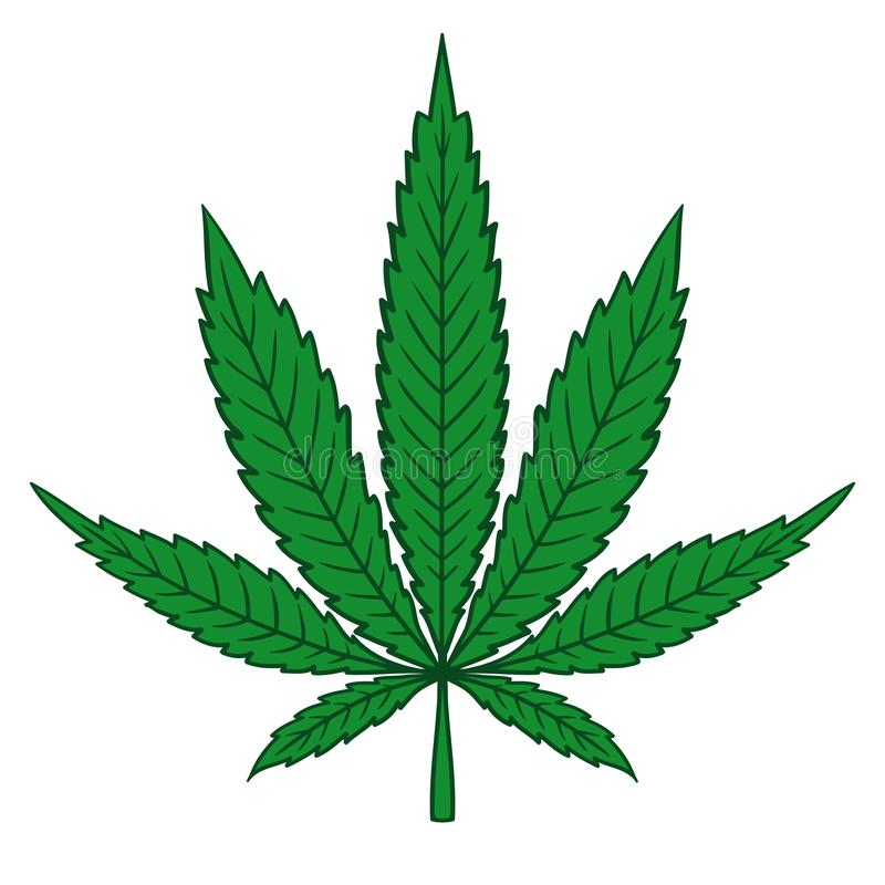 Cannabismarijuanablad i plan tappningstil royaltyfri illustrationer
