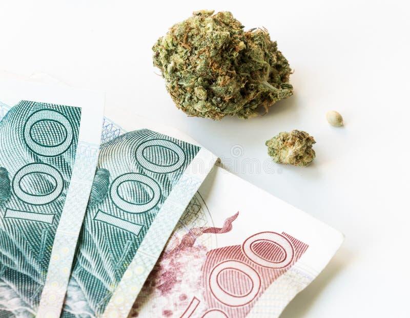 Cannabispengar kärnar ur royaltyfri fotografi