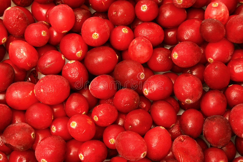 Canneberges image stock