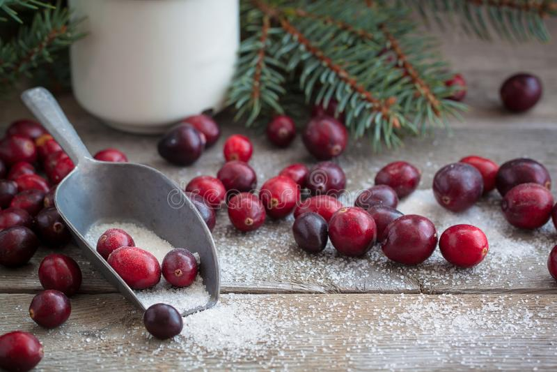 Canneberges fraîches de Noël dans la tradition de Russe de nouvelle année de sucre photographie stock