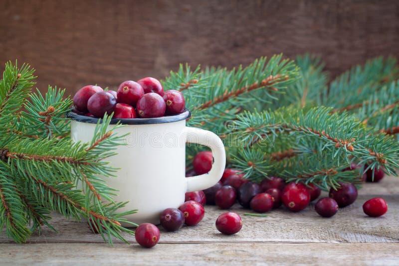 Canneberges fraîches de Noël en sucre dans une vieille tasse blanche de fer photo stock