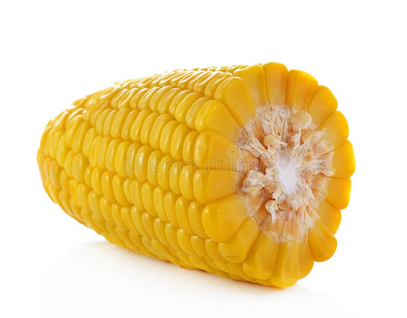 Canned corn royalty free stock image