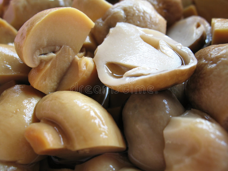 Canned Mushrooms stock image