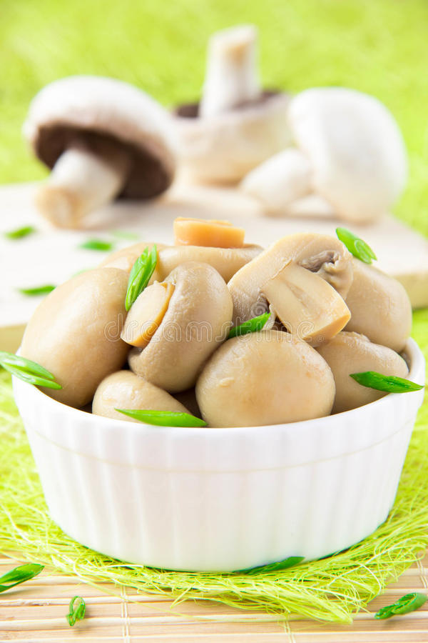 Canned mushrooms in a white ceramic bowl stock photo
