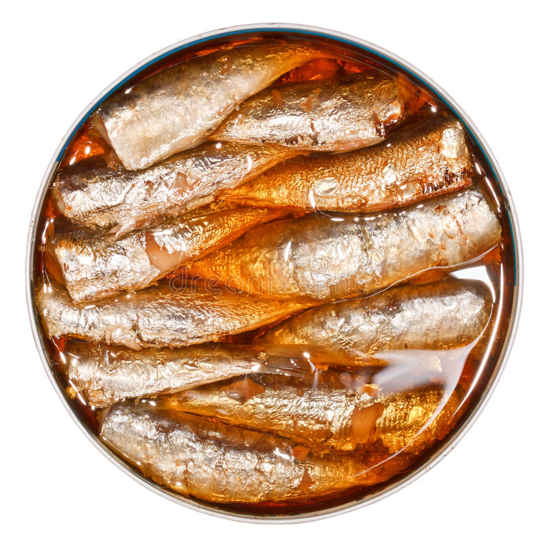 Download Canned Sardines stock photo. Image of appetizer, inside - 24627042