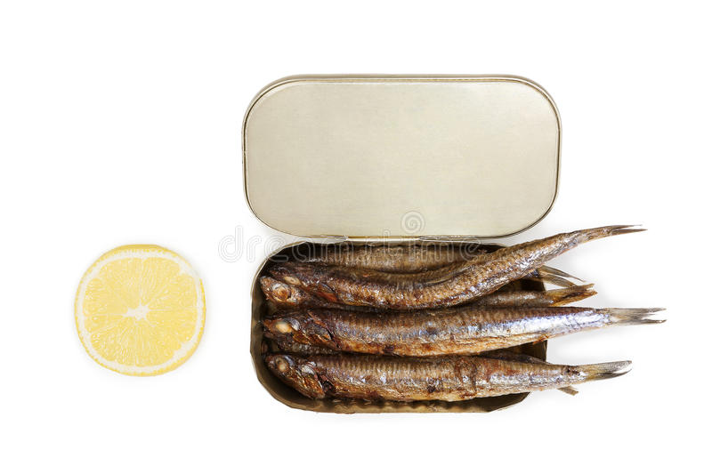 Canned sardines. royalty free stock images