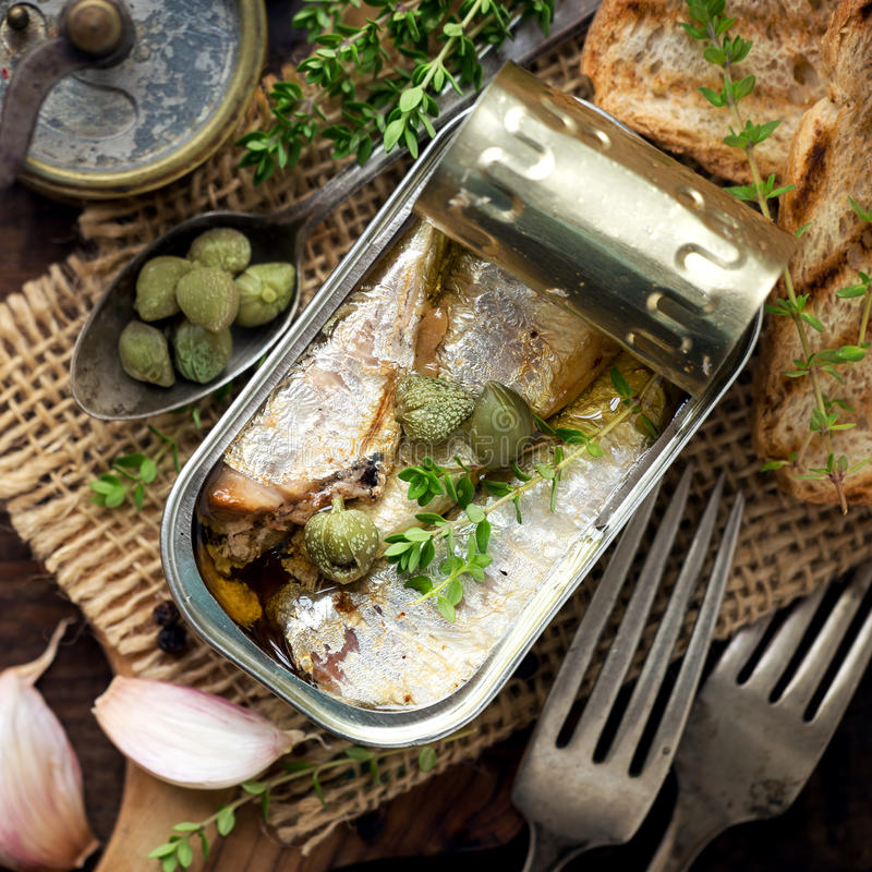 Canned sardines. Open tin of sardines in olive oil with capers and thyme on dark rustic wooden background royalty free stock photo