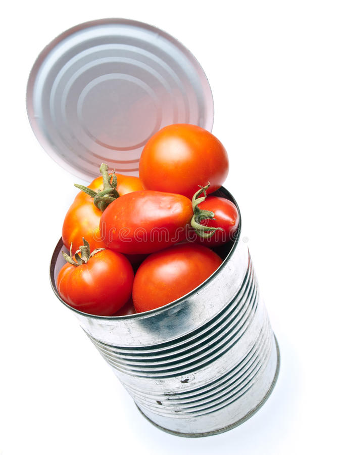 Canned tomato. Fresh organic tomatoes in the can on a white background royalty free stock image