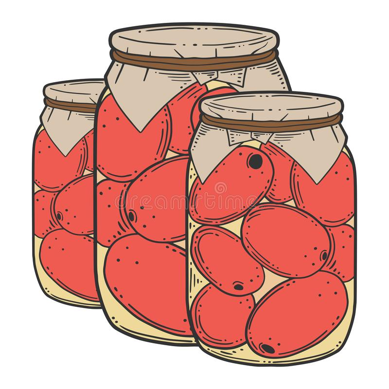 Canned tometoes preserve. Vector concept in doodle and sketch style stock illustration