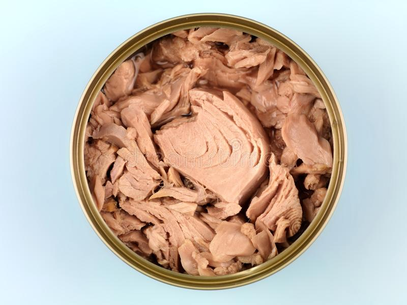 Canned Tuna royalty free stock image