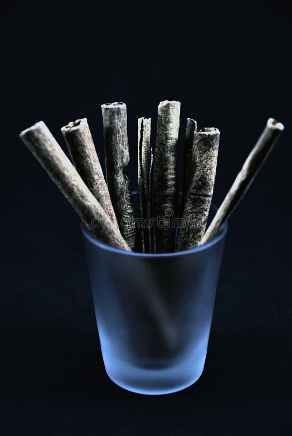 Cannella Cigarrettes immagine stock libera da diritti