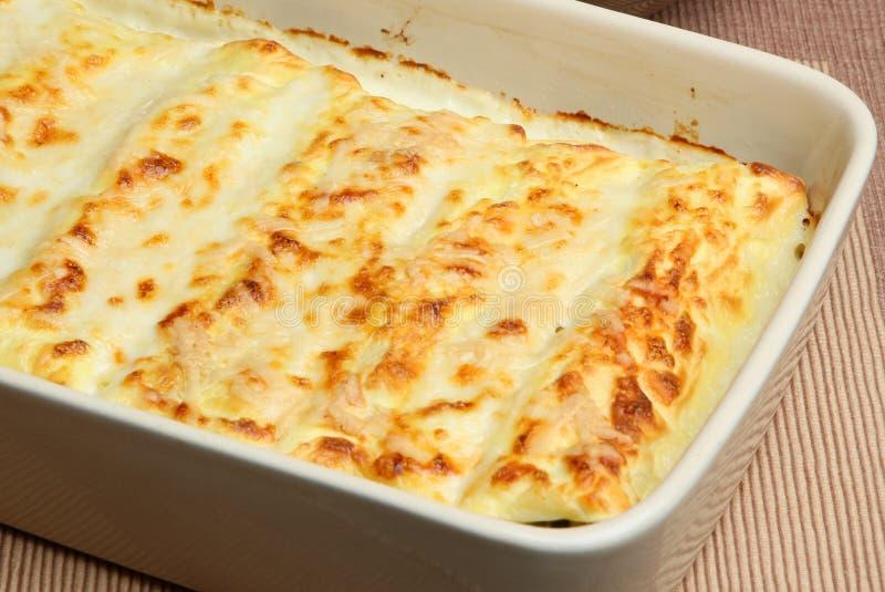 Cannelloni cuit au four photo stock
