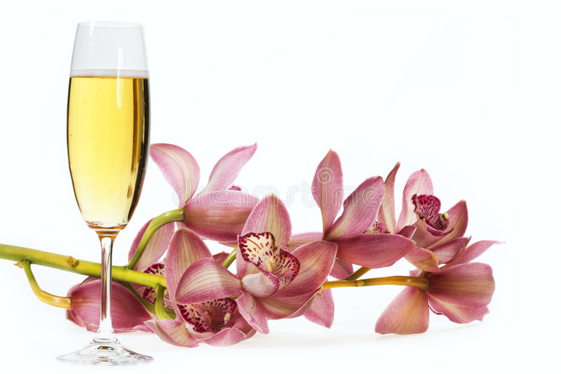 Cannelure de Champagne photos stock