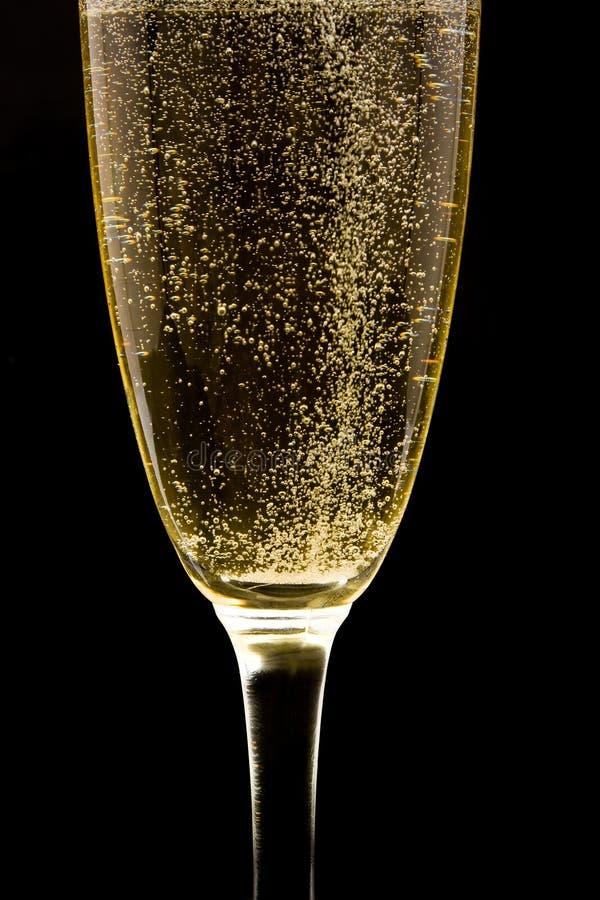 cannelure de champagne pétillant images stock