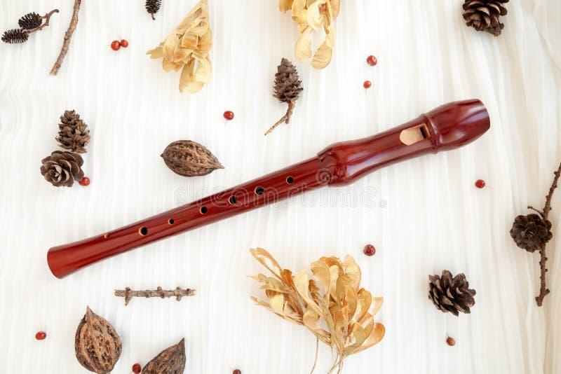 Cannelure en bois d'enregistreur de Brown photo libre de droits