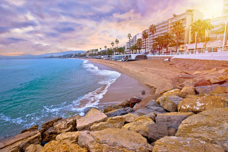 Cannes. Idyllic palm waterfront and sand beach in Cannes sun haze view stock photos