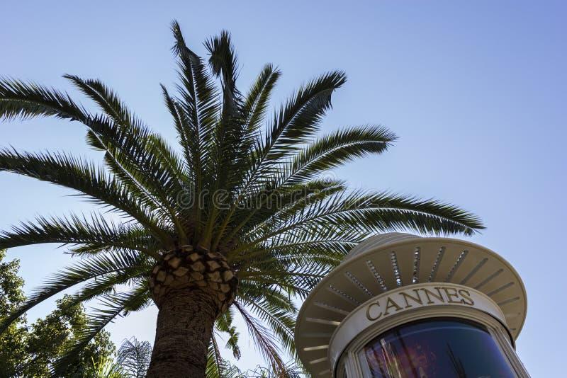 Cannes w Francja zdjęcia stock
