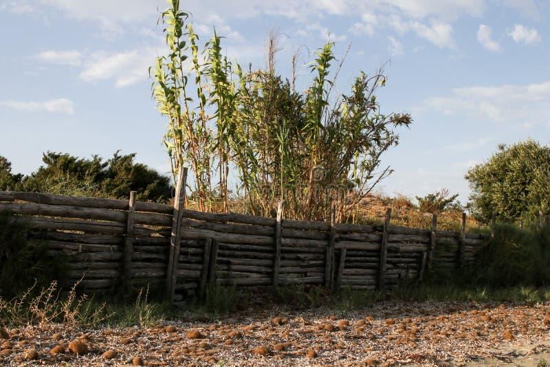 Canneto près d'une plage clôturée par une barrière en bois photographie stock