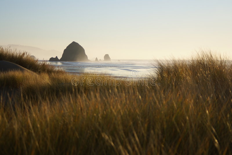 Cannon Beach Sand Dunes royalty free stock photography