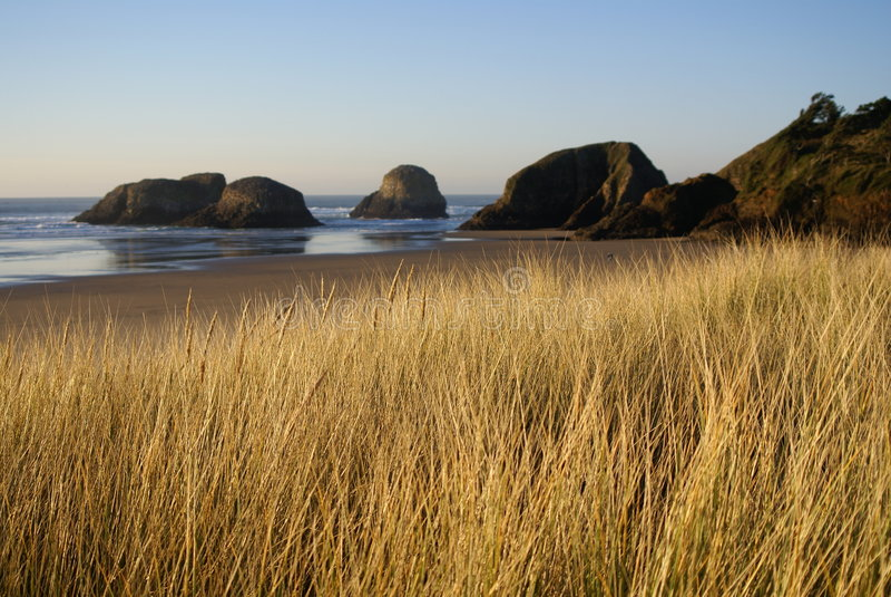 Cannon Beach Sand Dunes royalty free stock photo