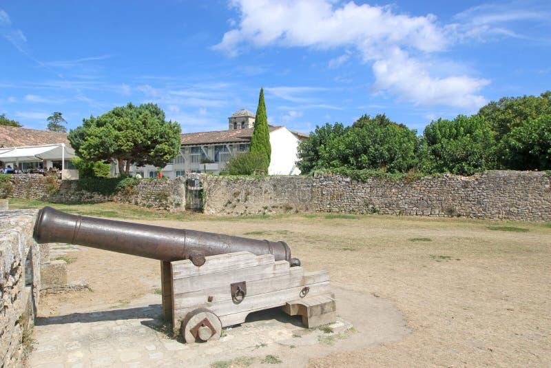 Cannon in Blaye Citadel, Francia immagine stock