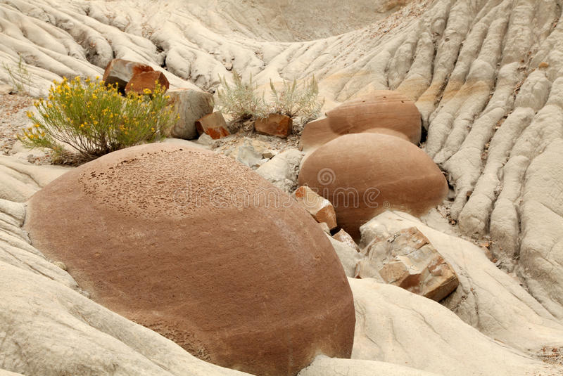 Cannonball Concretions Theodore Roosevelt N P. Cannonball Concretions in Theodore Roosevelt National Park, North Dakota stock images