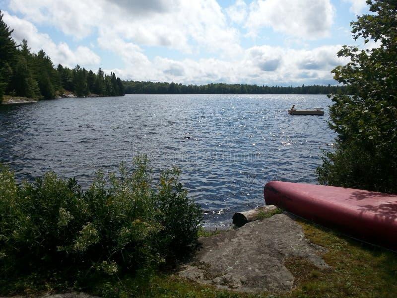 Canoë de lac loon photographie stock