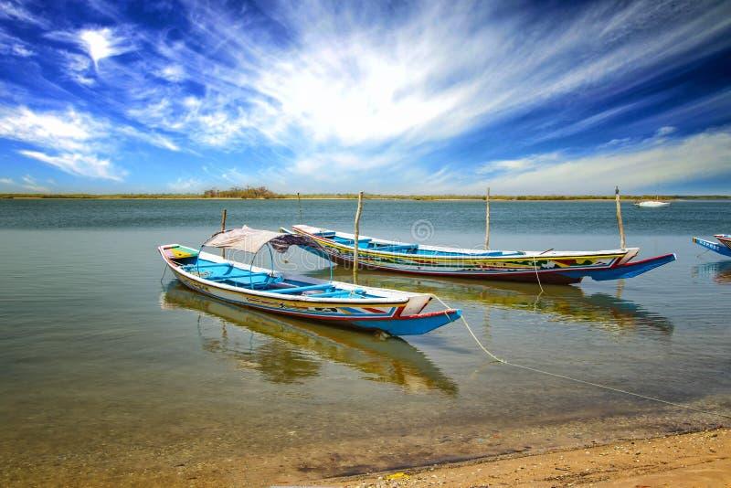 Canoa de madera en laguna marítima en Senegal en África. Es el Parque Natural Nacional de Saloum, un santuario de aves. En el foto de archivo libre de regalías