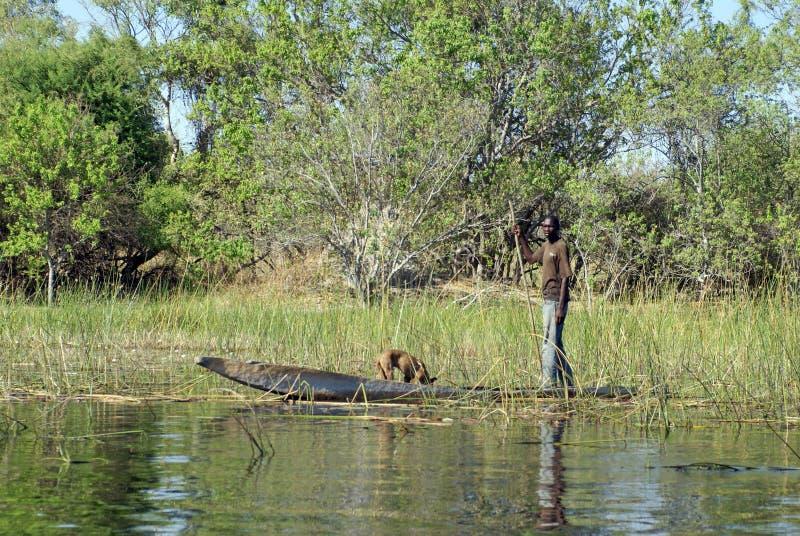Canoa nel delta di Okavango immagine stock