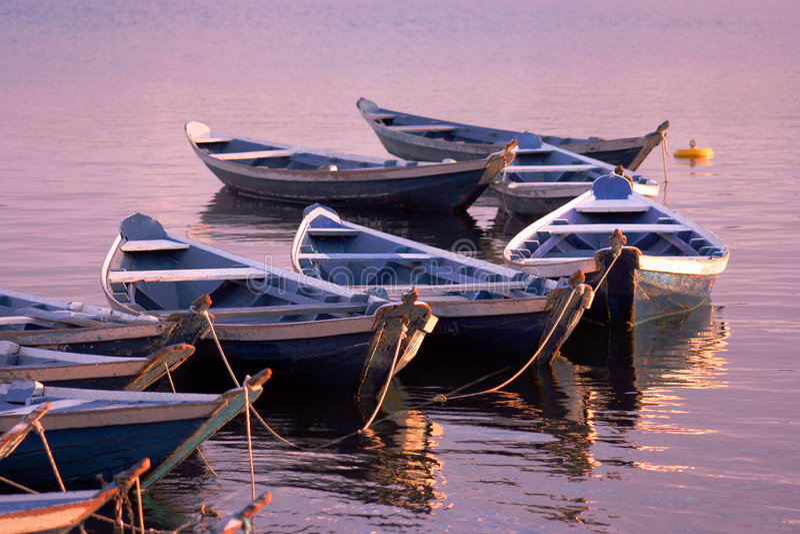 Canoas imagem de stock
