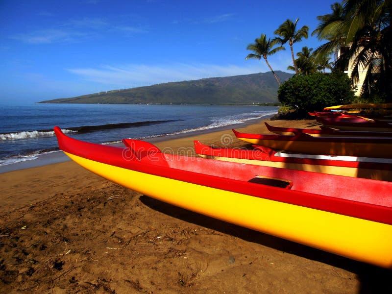 Canoas de Maui imagen de archivo libre de regalías