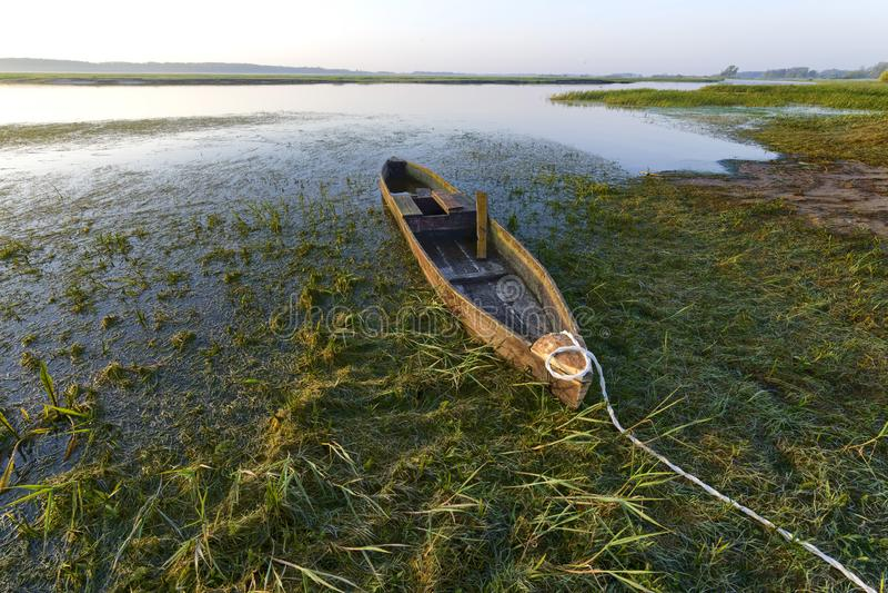 Canoe in Biebrza National Park, Poland stock image