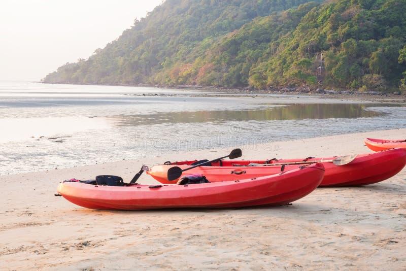 Canoe con la pagaia ed il giubbotto di salvataggio sulla spiaggia nel tramonto fotografie stock libere da diritti
