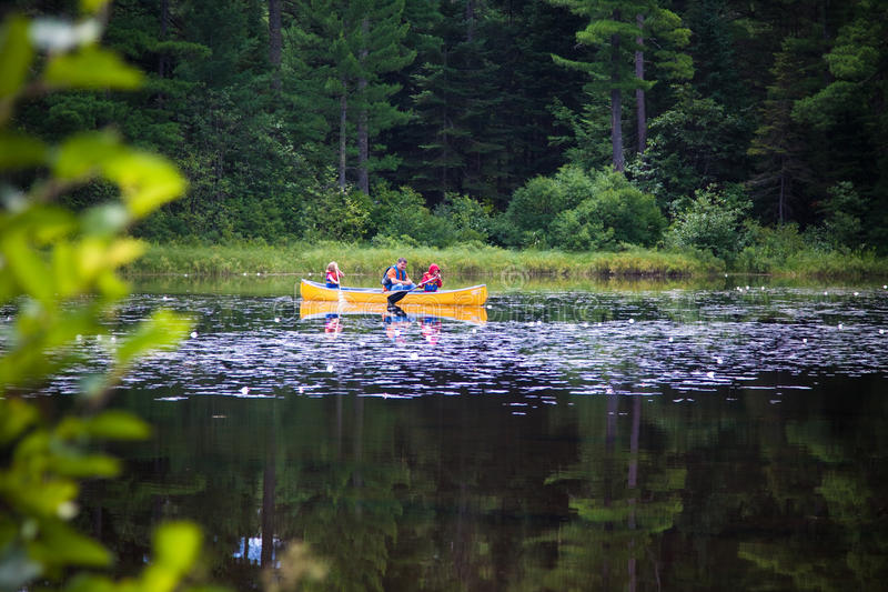 Canoe on the lake with the family. A father and his kids on a canoe at the Mew Lake, Algonquin Park stock photos