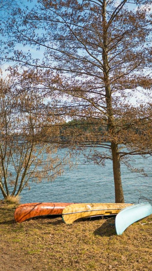 Canoe pelo lado do lago durante a hora dourada no parque natural imagem de stock