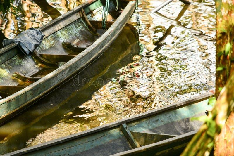 Canoe sull'acqua nel parco di Yasuni, Ecuador fotografia stock libera da diritti