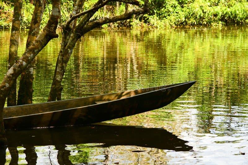Canoe sull'acqua nel parco di Yasuni, Ecuador immagine stock