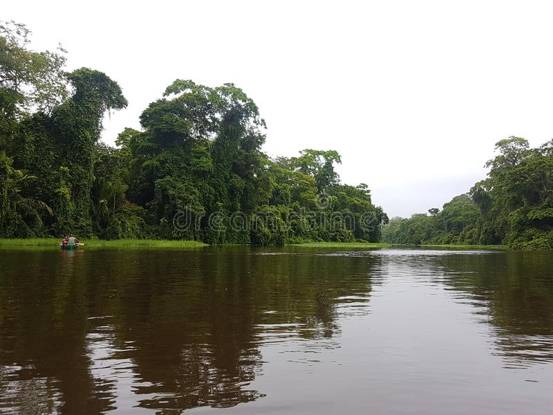 Canoe tour, On the River, Tortuguero stock photography