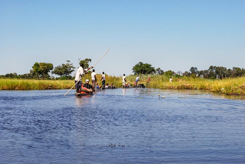 Canoe trip with traditional mokoro boat on river through Okavango Delta near Maun, Botswana Africa. Canoe trip with traditional mokoro boat on the river through stock photography
