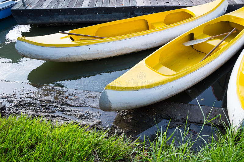 Canoe in una palude fotografie stock
