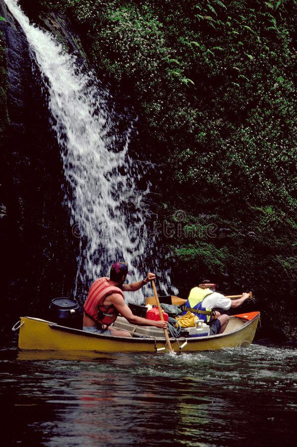 Canoeing. On Wanganui River, New Zealand royalty free stock photography
