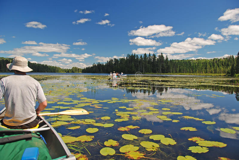 Canoeing durch die Lilienauflagen lizenzfreie stockfotos