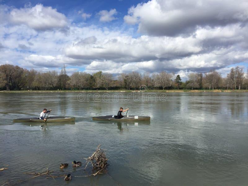 Canoeing el río Rhone, patos en primero plano fotos de archivo libres de regalías