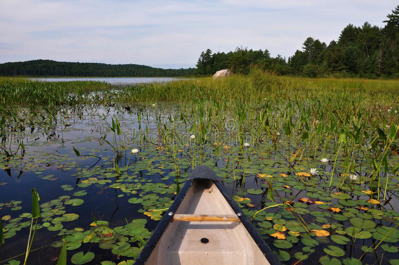 Canoeing shallow waters.