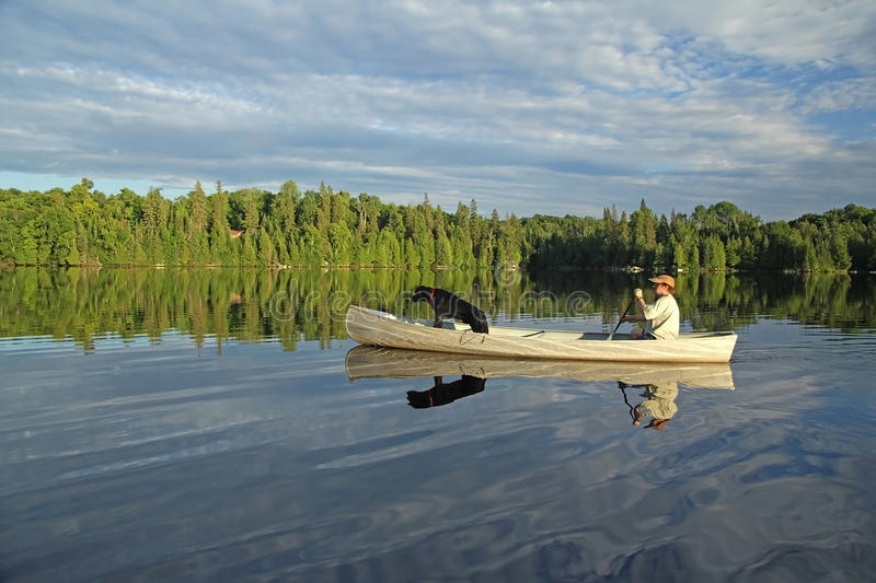 Canoeist with Labrador Retriever in the Bow. Man Paddling a Canoe on a Northern Ontario Lake with a Black Labrador Retriever in the Bow and Beautiful Reflection royalty free stock photography