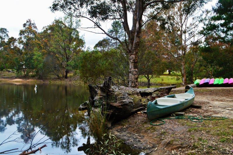 canoes fotos de stock
