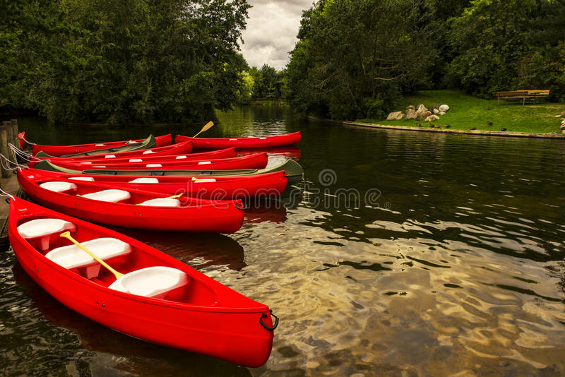 Canoes on a lake. Red rental canoes on a lake. The canoes are moored and ready for a trip stock photo